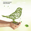 Зеленый –  значит экологичный