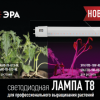Новинка: светодиодные линейные фитолампы Т8