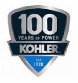 Конференция для мастер-дистрибьюторов продукции KOHLER-SDMO прошла в онлайн-формате