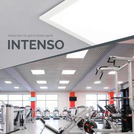INTENSO — качество по доступной цене